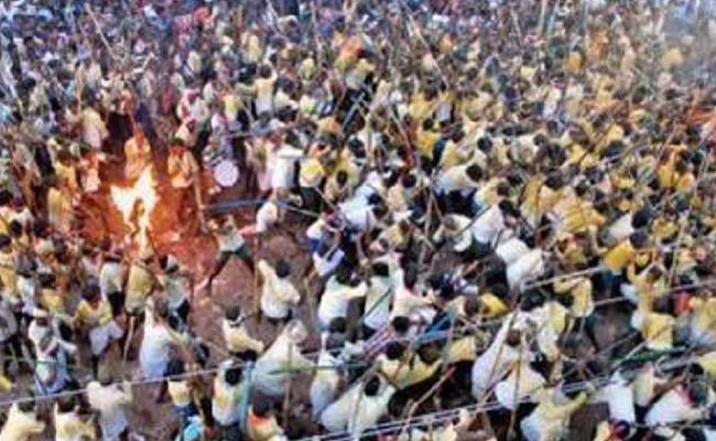 Bani Festival