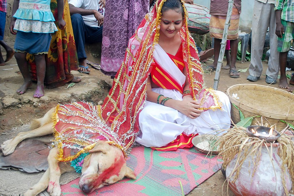 woman marries a dog